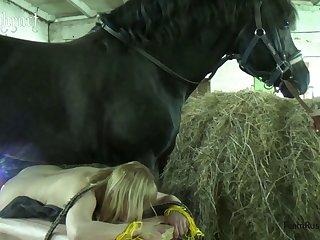 Gauchita De Lanus Le Doy Estilo caballo Camara Abajo